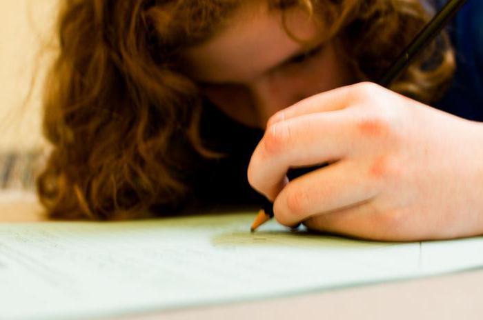 написать сочинение о семье