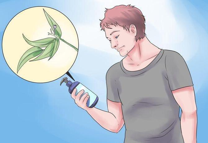 как отрастить бороду в домашних условиях