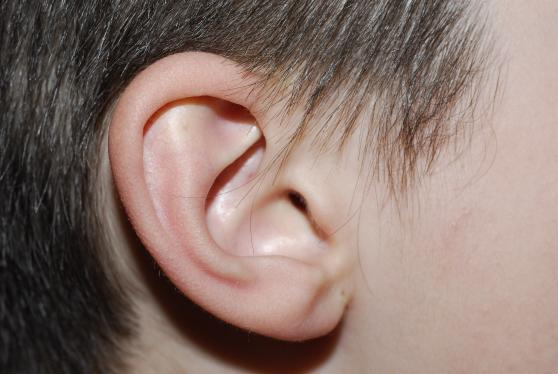 squelching sounds in the ear