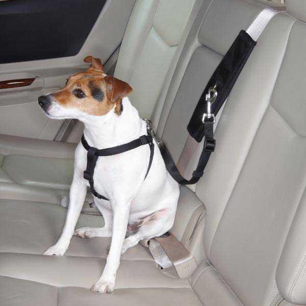 ремень безопасности для собак в машине