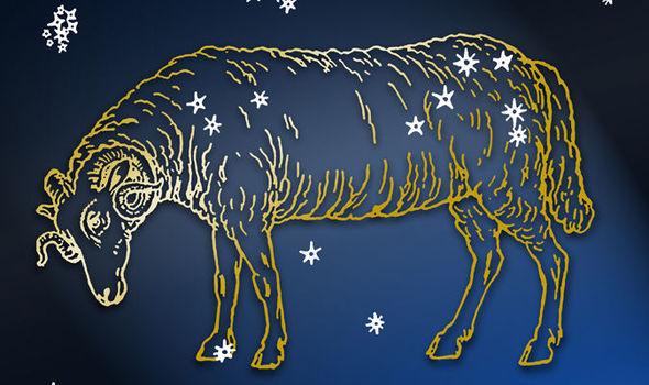 Эрогенные зоны Овна: интимный гороскоп, отношения с Овном, совместимость, советы астрологов