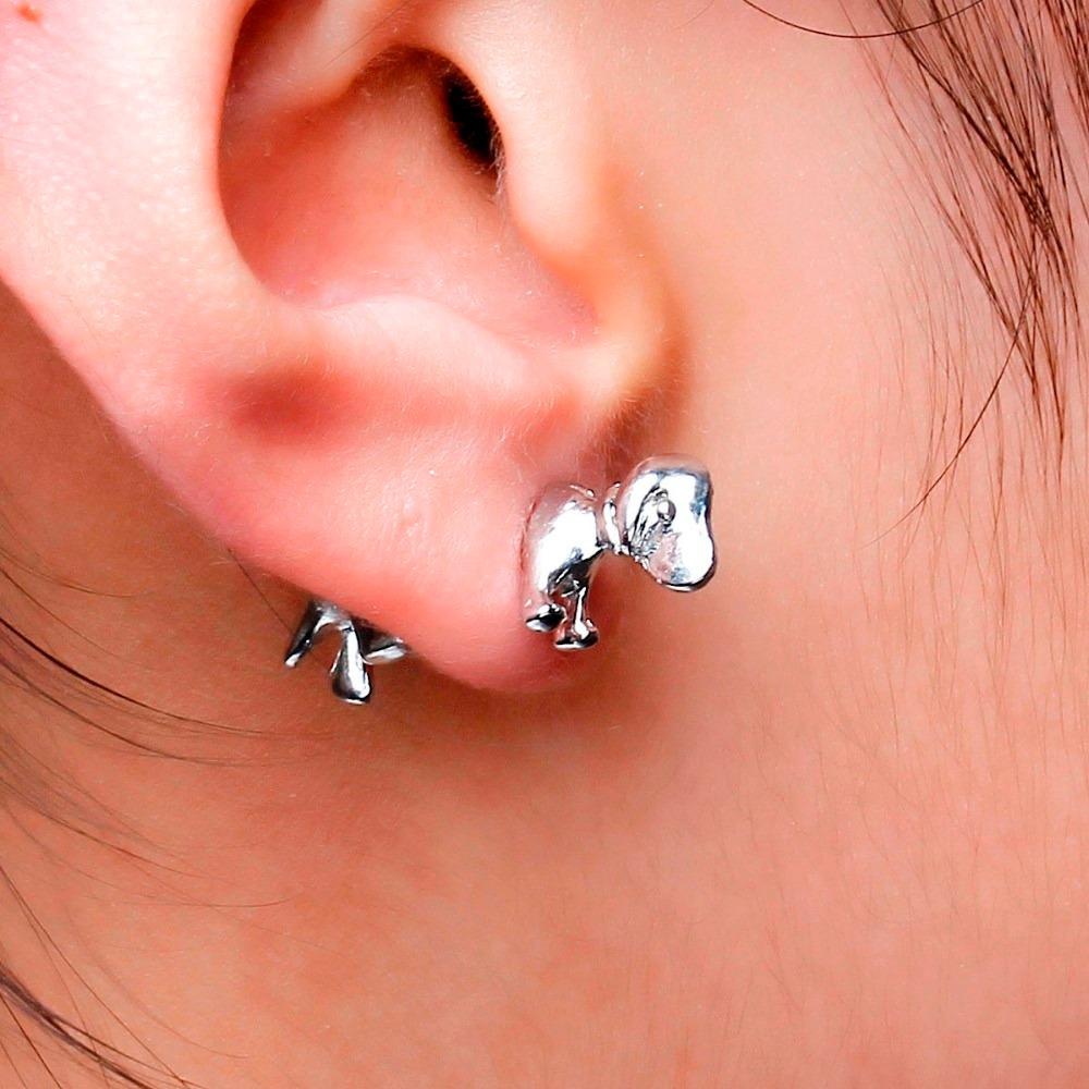 Украшение на ухо: виды, фото с описанием
