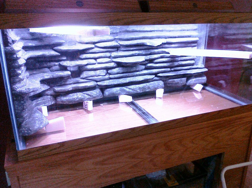 Как приклеить фон на аквариум: инструкция, советы и фото