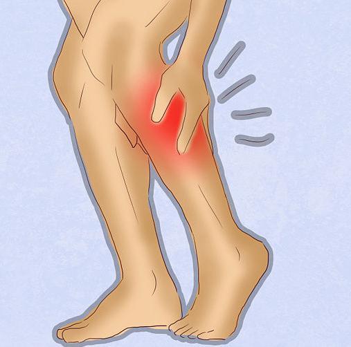 почему сводит икроножную мышцу