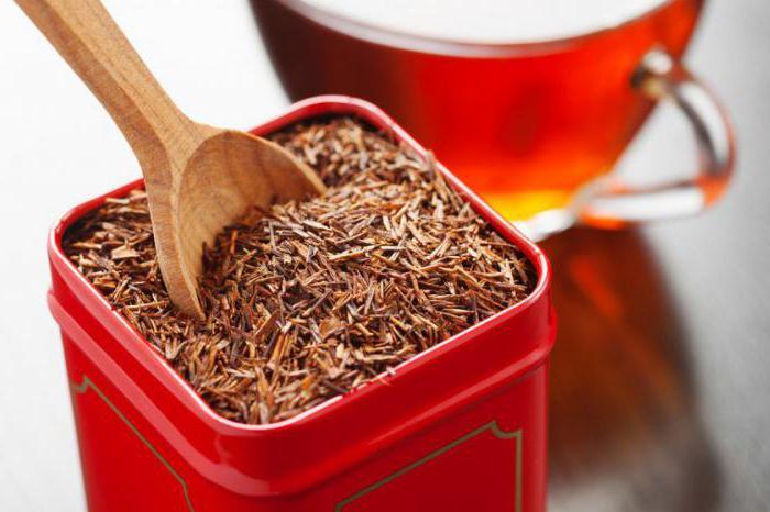 Чай ройбуш: полезность и вред. Состав и характеристики чая р…