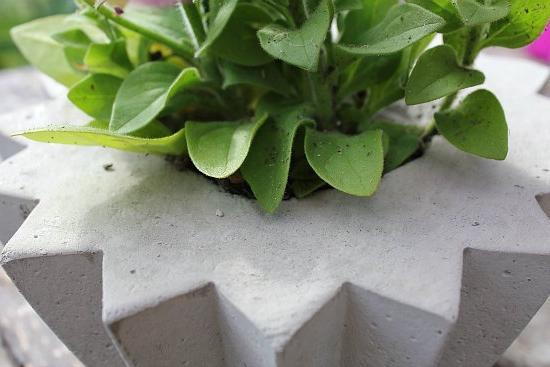 Вазон из бетона своими руками