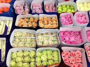 Рижский рынок цветов время работы