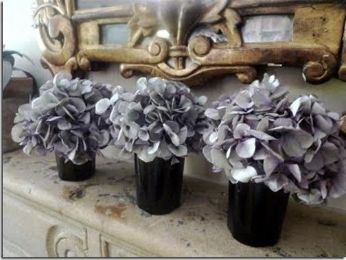 Цветок гортензия выращивание
