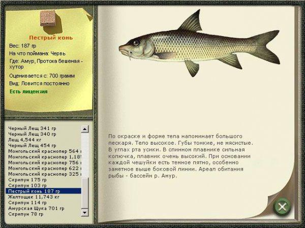 русская рыбалка что такое квест