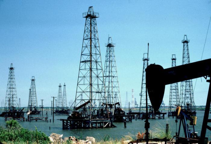 полезные ископаемые нефть газ