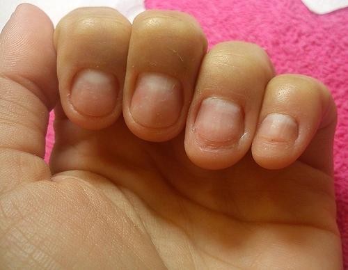 Нарощенные ногти фимо 69
