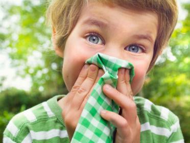 как вылечить аллергию носа