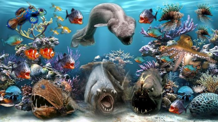 Морские животные названия и виды