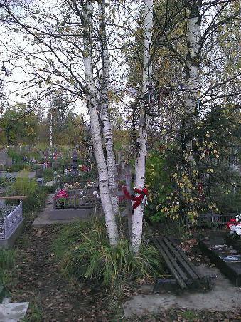 ковалевское кладбище как