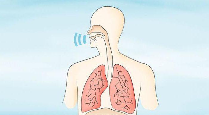 тренировка грудного голоса