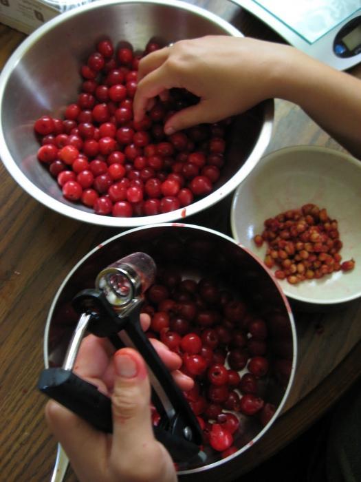 Как правильно варить варенье из вишни с косточками