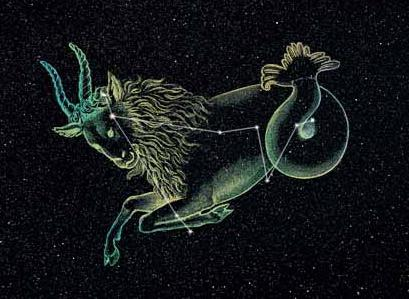 звезды со знаком козерог