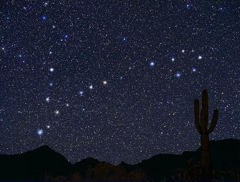 звёзды знаком зодиака рыбы