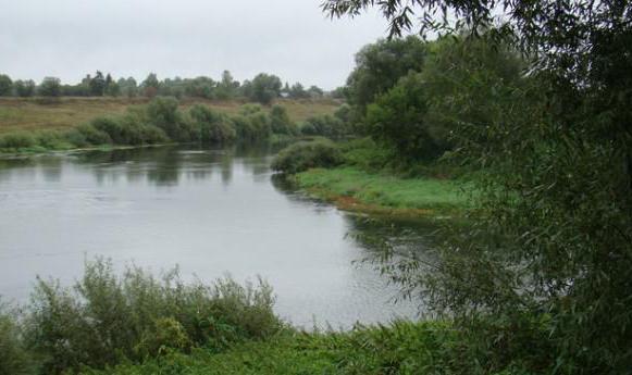 Тула река Упа