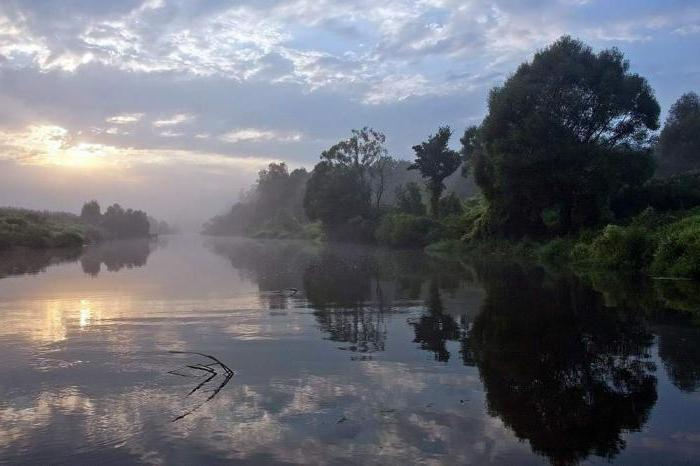 набережная реки Упы Тула