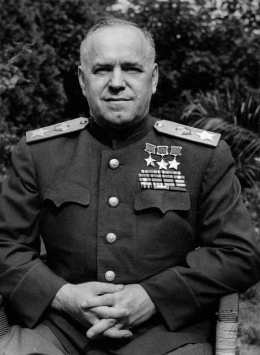 Зоря Лев Иванович полный Георгиевский кавалер