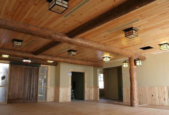 виды отделки потолка на кухне