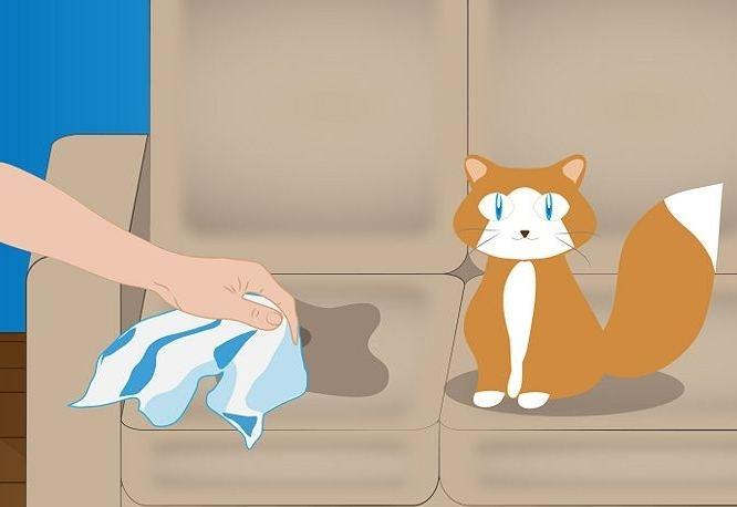 Убрать котят