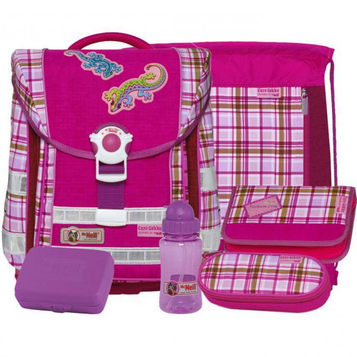 Schneiders рюкзаки для девочек харьков рюкзаки deuter