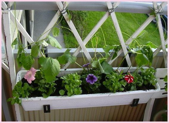 Балконные ящики для цветов в леруа мерлен - 4