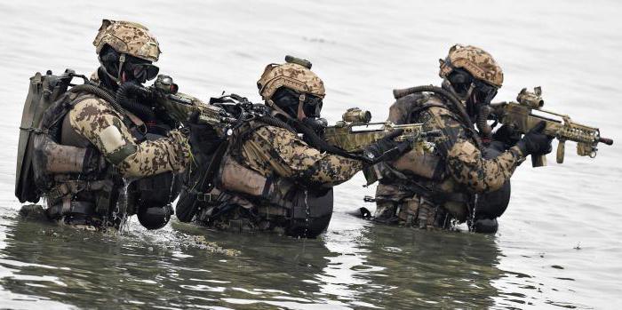 какая армия в Германии