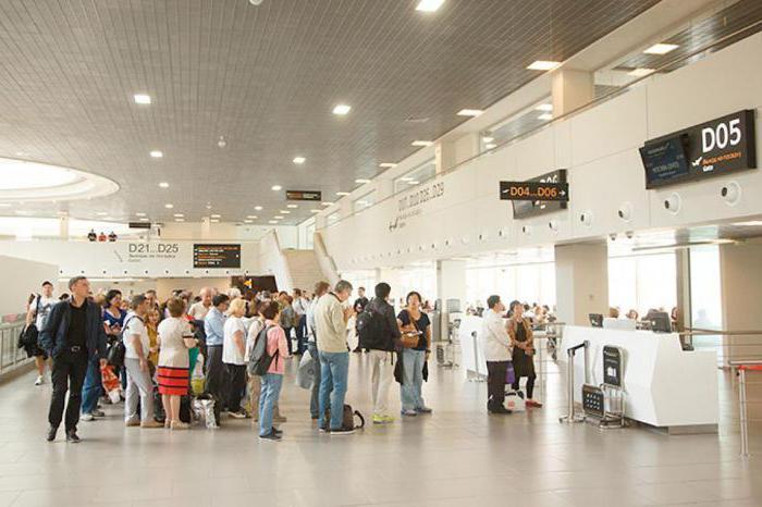 аэропорт пулково терминал 1