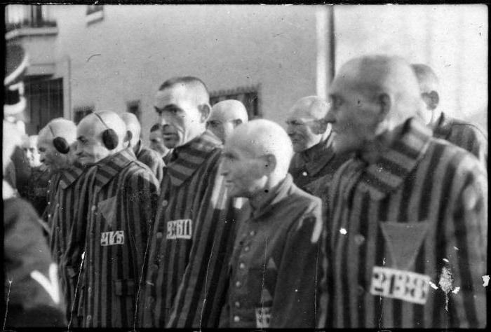 заксенхаузен концентрационный лагерь списки узников