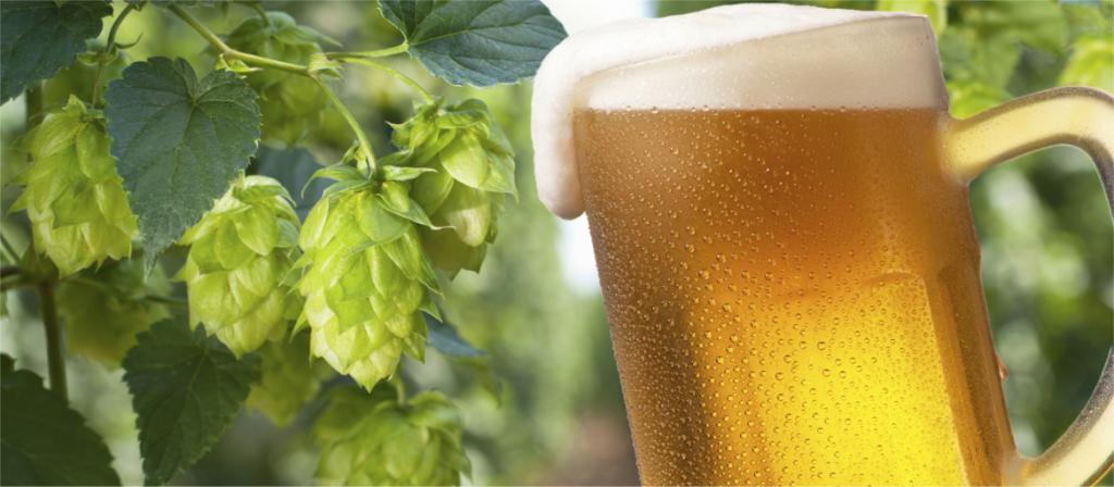 atec hops beer recipes