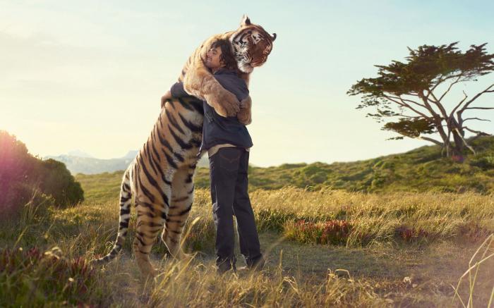 год какого животного 1972: