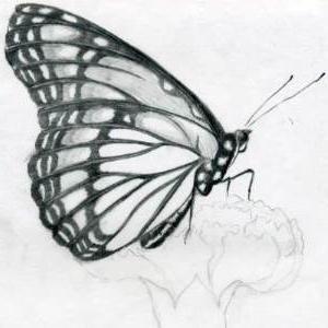 как перенести рисунок с бумаги на бумагу