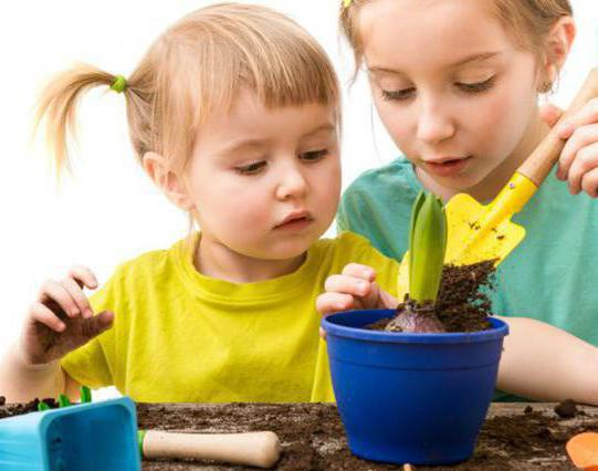сенсорное воспитание детей