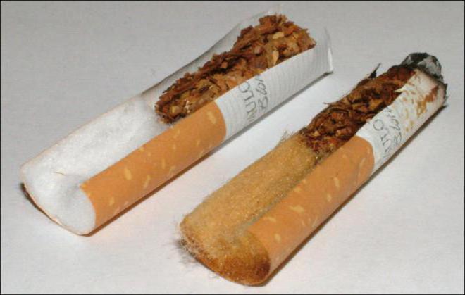 Что находится внутри сигареты