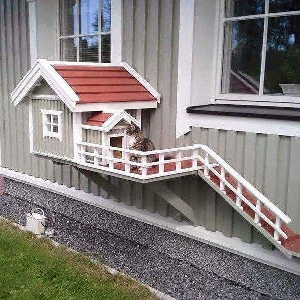 Зимний домик для кошки на улице