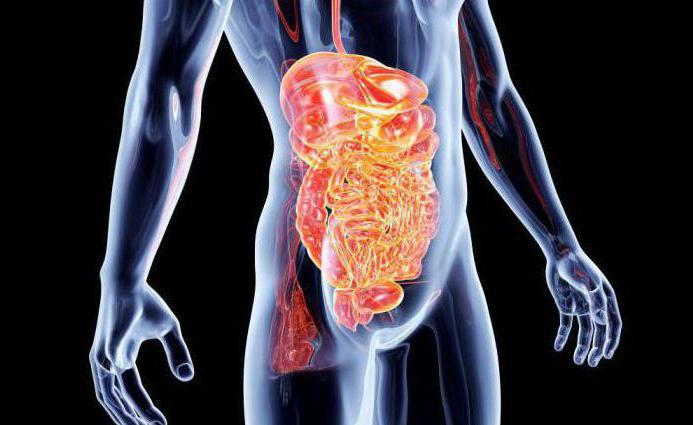 методы обследования кишечника