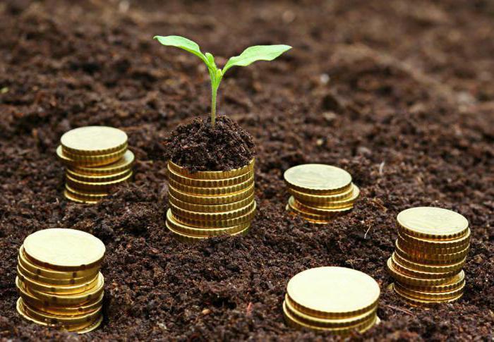 теории инвестиций курсовая работа