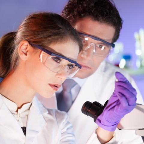 Рост микроорганизмов обнаружен что это 22