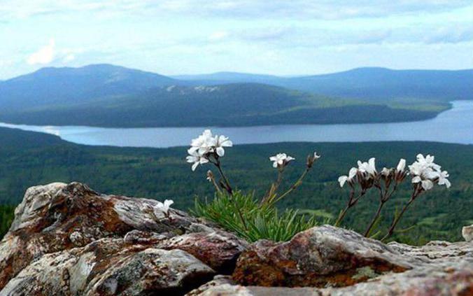 каменный пояс земли русской называют