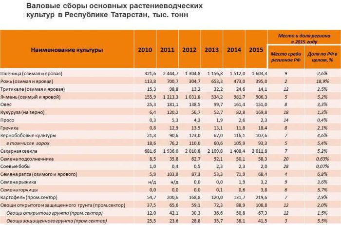 Сельское хозяйство Татарстана: особенности, продукция и интересные факты