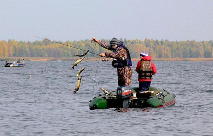рыбалка на котовском море