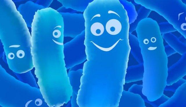 Свечи с бактериями 13
