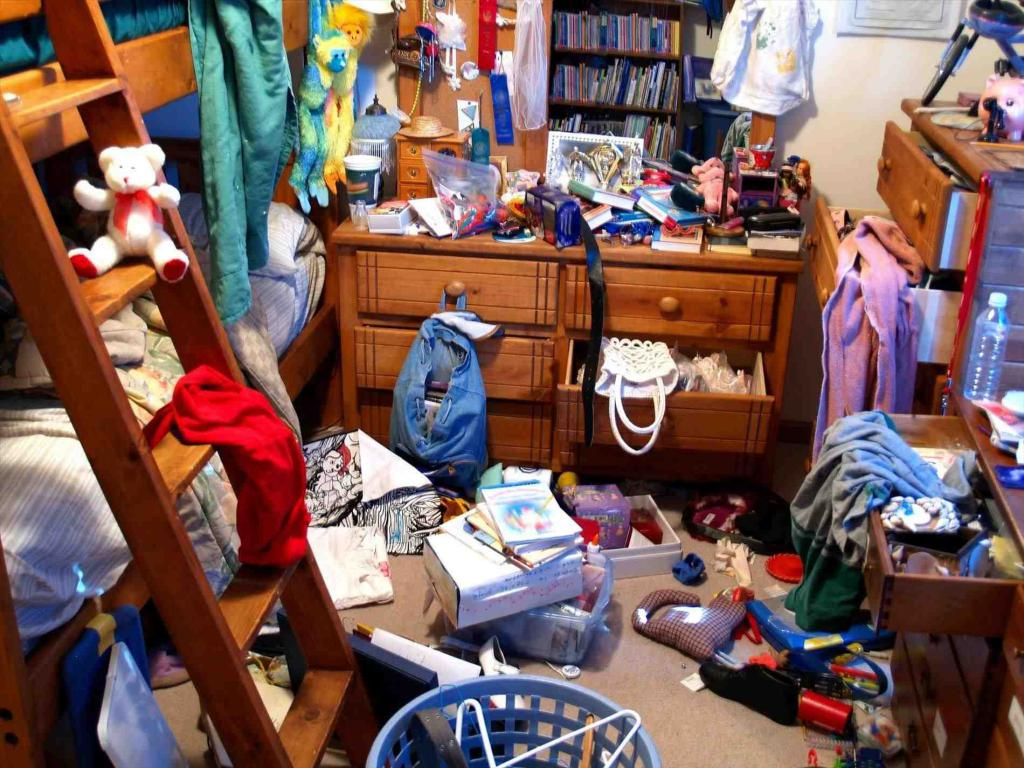 general cleaning of heavily littered apartments
