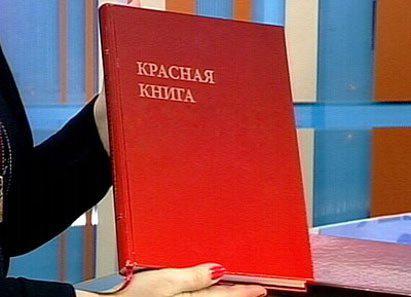 """международная красная книга Ñ""""оÑ'о живоÑ'ных"""