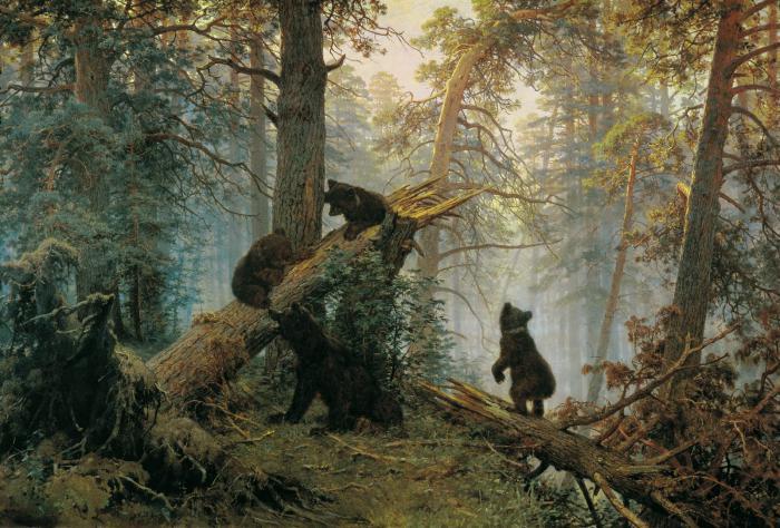 обитатели соснового леса