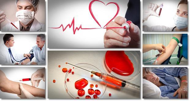 Стандартный plt анализа крови и расшифровка