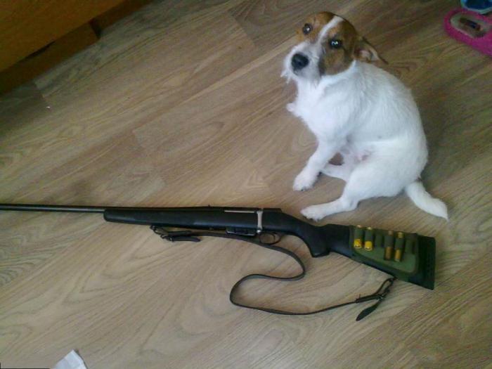 охотничье ружье мц 20 01